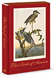img - for The Birds of America: The Bien Chromolithographic Edition book / textbook / text book