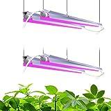 Barrina LED Grow Light 4FT, 168W