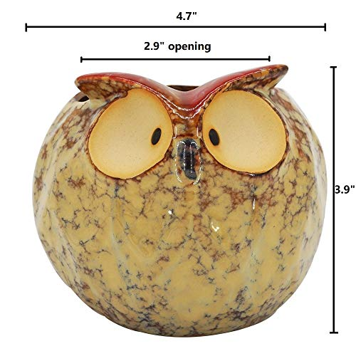 GeLive Owl Planter Ceramic Succulent Plant Pot Fun Animal Flower Container Decoration Windowsill Box with Drainage Hole Fat Owl Planter