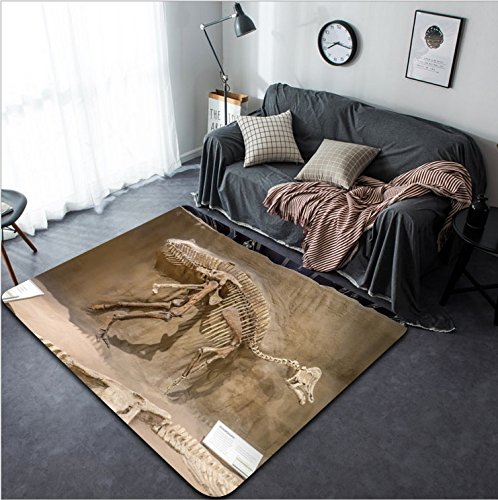 Fern Border Outdoor Rug (Vanfan Design Home Decorative 295268861 DRUMHELLER CANADA - JULY 4 Dinosaur fossil exhibit at the V Royal Tyrrell Museum on July 4 2015 at Drumheller Alberta The museum is famous for its palaeontolog)