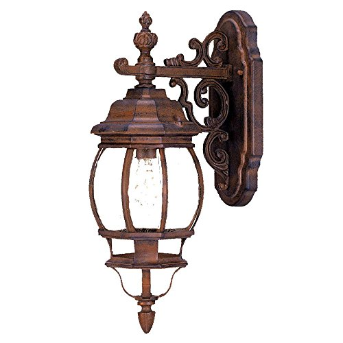 Acclaim 5155BW/SD Chateau Collection 1-Light Wall Mount Outdoor Light Fixture, Burled Walnut