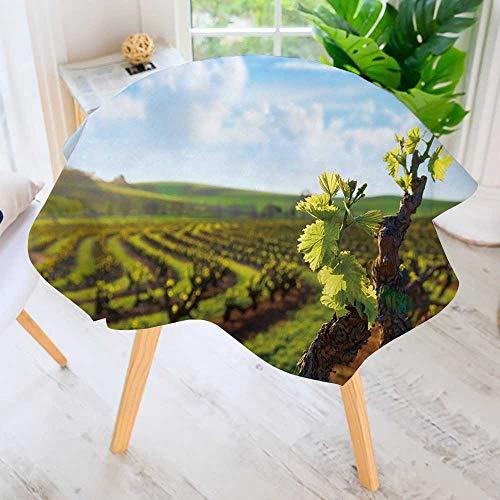 PRUNUS Circular Solid Polyester Tablecloth-barossa Valley Vineyard seppeltsfield South Australia for Wedding Restaurant Buffet Table Decoration 67