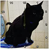Cheap 3dRose dpp_173875_2 Image of Cat on Potty-Wall Clock, 13 by 13-Inch