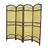 Home Accents Rattan Tropical 4 Panel Screen Divider