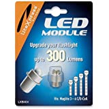 LiteXpress LXB404 - Kit di potenziamento LED a 300 Lumen, per torce tascabili Maglite 4-6 C/D-Cell