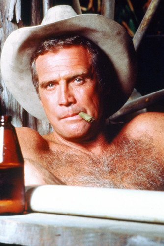 Lee Majors In The Fall Guy 24x36 Poster In Bathtub Wearing Stetson