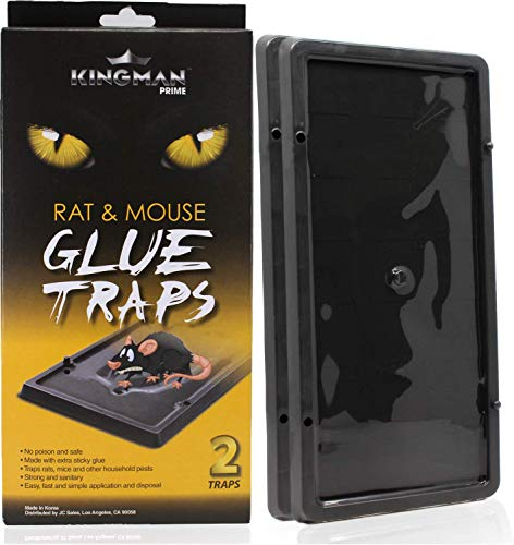 KINGMAN Mouse Trap Rat Trap Glue Trap/Board (Large Size) (5 Pack / 10 Traps) Rodent Trap Safe Easy Non-toxic