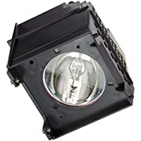 FI Lamps TOSHIBA 65HM167_5655 Compatible with TOSHIBA 65HM167 TV Replacement Lamp with Housing