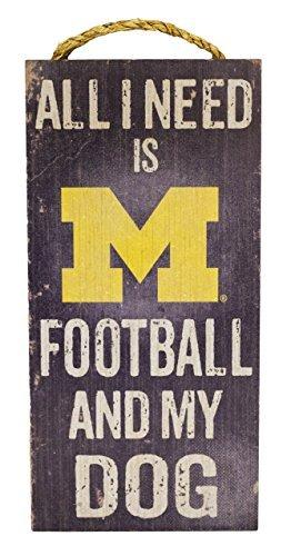 NCAA Michigan Wolverines 6