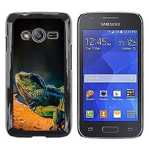 TopCaseStore / la caja del caucho duro de la cubierta de protección de la piel - Cool Majestic Iguana Lizard - Samsung Galaxy Ace 4 G313 SM-G313F