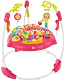 Fisher-Price Petals Jumperoo, New-born Baby Activity Centre with Music and Lights, Pink