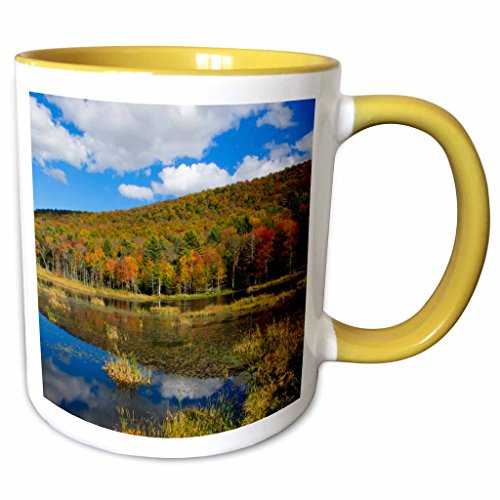 3dRose Danita Delimont - Lakes - USA, Vermont, Burlington, Jericho. Lake with autumn foliage. - 11oz Two-Tone Yellow Mug - Outlet Burlington Vermont