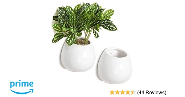 Amazon 4 Inch Small Wall Mounted Ceramic Flower Plant Vase