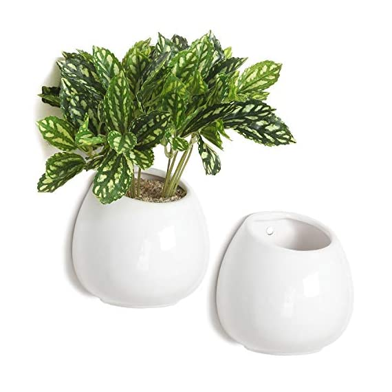 MyGift 4 Inch Small Wall Mounted Ceramic Flower Plant Vase, Succulent Planter Pots, Set of 2, White - Set of 2 small circular hanging planter pots with high gloss finish. Perfect for succulents, herbs, cacti, flowers and more. Both planters can be mounted or hung on any wall with proper mounted hardware. - vases, kitchen-dining-room-decor, kitchen-dining-room - 51BivST6NfL. SS570  -