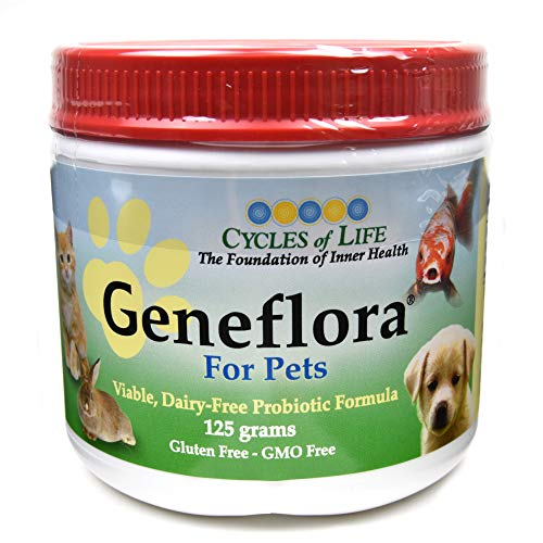 GENEFLORA - The Original Probiotic Powder Formula for Dogs, Cats, and other Pets - Veterinarian Recommended - 125 Grams By Activhealth by ActivHealth