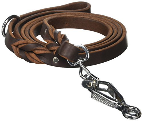 Dean & Tyler No Assumptions Dog Leash with Brown Stainless Steel Ring on Handle and Herm Sprenger Snap Hook, 6-Feet by 3/4-Inch by Dean & Tyler (Image #1)