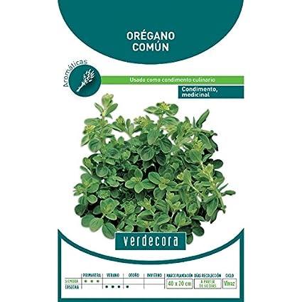 Semillas Aromáticas - Orégano Común - Verdecora