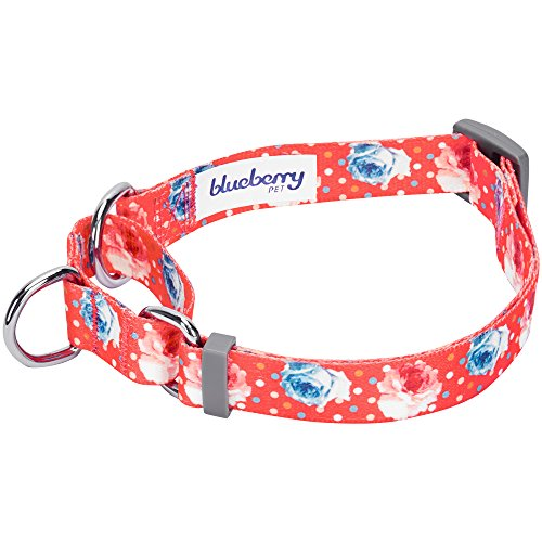 Image of Blueberry Pet 6 Patterns Spring Scent Inspired Rose Print Safety Training Martingale Dog Collar, Brink Pink, Medium, Heavy Duty Adjustable Collars for Dogs