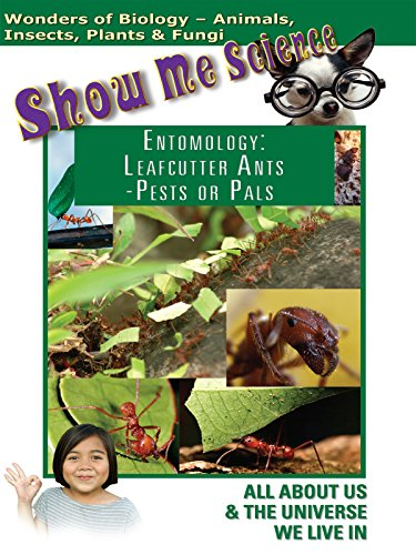 Show Me Science Biology - Entomology Leafcutter Ants Pests or Pals?