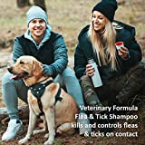 Veterinary Formula Clinical Care Flea and Tick