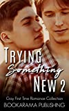 Trying Something New 2: Gay First Time Romance Collection