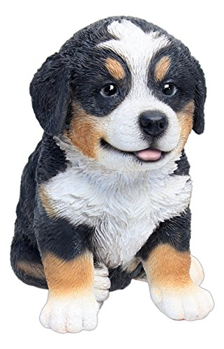 Nature's Gallery Pet Pals (Bernese Mountain Puppy)