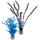 biOrb Blue/Purple Plant Pack