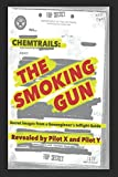 img - for Chemtrails: The Smoking Gun: Secret Images from a Geoengineer's Inflight Guide book / textbook / text book