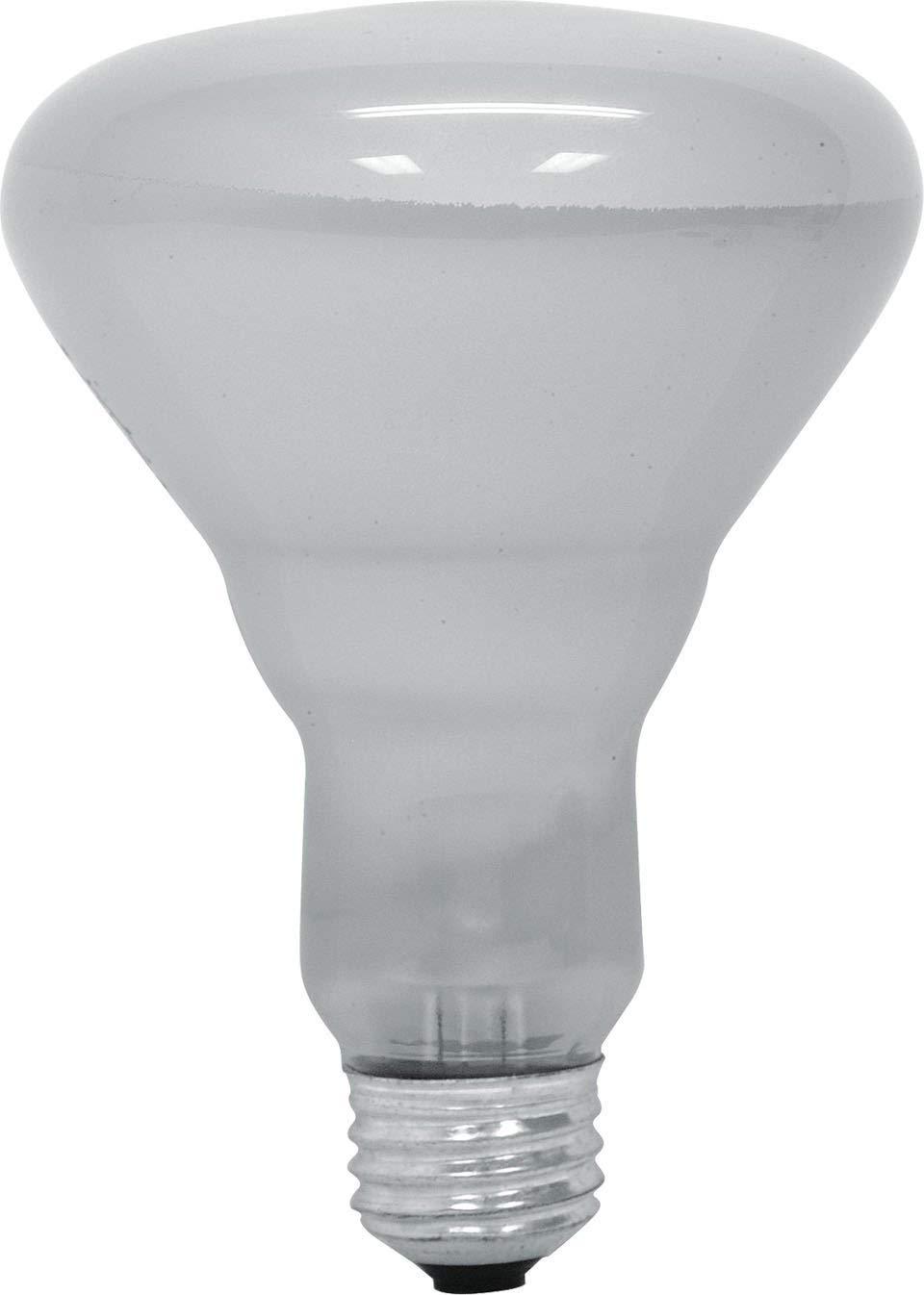GE Lighting 65-Watt 740-Lumen Track & Recessed R30 Indoor Reflector Incandescent Light Bulb, Soft White, (12 Pack 65-Watt)