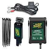 Motorcycle Dual Charge Bundle - 4 Items: Battery Tender Junior 12V 0.75A, Ring Terminal Harness With Fuse, Quick Disconnect USB and Dorman 4'' Black Zip Ties