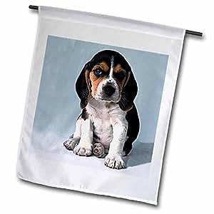 fl_702_1 Dogs Beagle - Beagle Pup - Flags - 12 x 18 inch Garden Flag