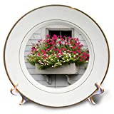 3dRose Roni Chastain Photography - Pink fowers by The Window - 8 inch Porcelain Plate (cp_295334_1)
