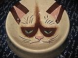 Hand Painted Grumpy Cat blow