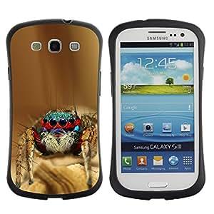 Paccase / Suave TPU GEL Caso Carcasa de Protección Funda para - Cool Spyder Bro - Samsung Galaxy S3 I9300
