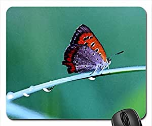 Princess Mouse Pad, Mousepad (Butterflies Mouse Pad, 10.2 x 8.3 x 0.12 inches)