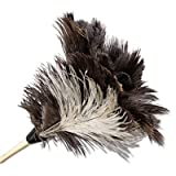 Professional Ostrich Feather Duster, 7'' Handle