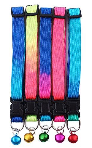 Healthy Clubs Halsband mit Glöckchen bunt glänzend Reflektierend, Sicherheitband mit Schnalle für Kleine Hunde/Katzen
