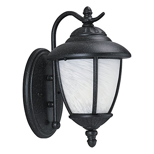 (Sea Gull Lighting 84049-185 Yorktown One-Light Outdoor Wall Lantern with Swirled Marbleize Glass Shade, Forged Iron Finish)