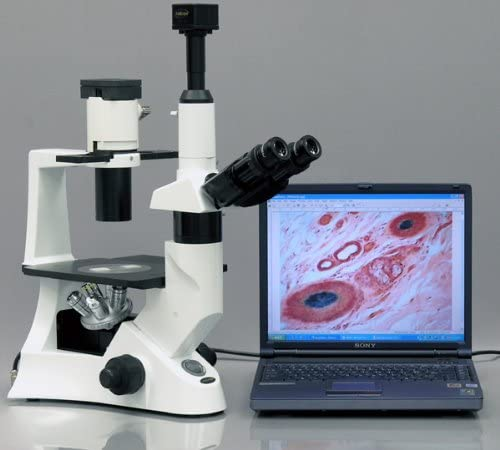 110V 40x-1000x 0.3 NA Abbe Condenser 30W Halogen Illumination WH10x and WH25x Eyepieces AmScope IN300TC Long Working Distance Inverted Trinocular Microscope Mechanical Stage Phase-Contrast Objectives