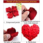 100Pc-Artificial-Silk-Rose-Petals-Wedding-Party-Flower-Decoration-Aisle-Runners-Flower-Girl-Tossing-Table-Decoration-Multi-UseRose