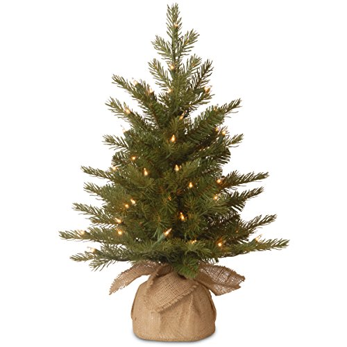 National Tree 2 Foot Nordic Spruce Tree with 50 Clear Lights in Burlap Base (PENSS1-333-20-1) -  National Tree Company, PENS1-333-20