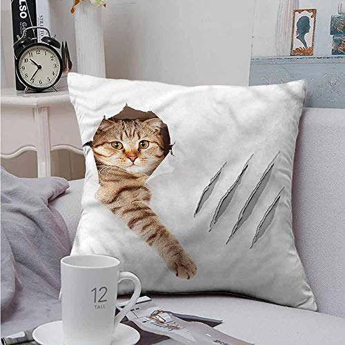 Fbdace Square Throw Throw Pillow Covers Animal Funny Cat in Wallpaper Hole Soft, Breathable and Hypoallergenic 16 X 16 Inch]()