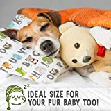 Toddler Pillow with Pillowcase - 13X18 Soft Organic Cotton Baby Pillows for Sleeping - Machine Washable - Toddlers, Kids, Infant - Perfect for Travel, Toddler Cot, Bed Set