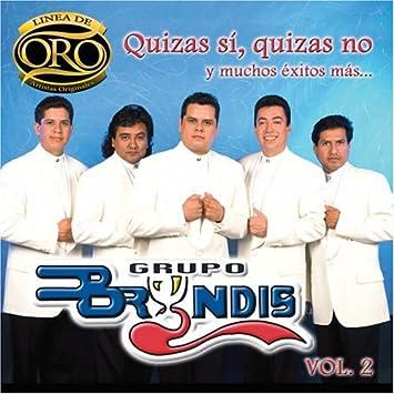 Grupo Bryndis Quizas Si Quizas No Y Muchos Exitos Linea Oro 2 Music