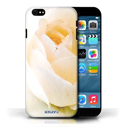 Etui / Coque pour Apple iPhone 6/6S / Doux Rose conception / Collection de floral Fleurs
