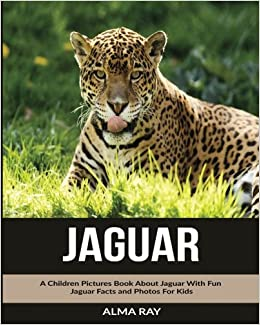 Attractive Jaguar: A Children Pictures Book About Jaguar With Fun Jaguar Facts And  Photos For Kids: Alma Ray: 9781530679331: Amazon.com: Books