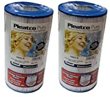 Replacement Filter Cartridge for Dynamic Series IV - DFM, DFML, Waterway 35 & In-Line - 2 Pack