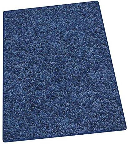 Koeckritz 9 x12 Crazy Blue Carpet Area Rug
