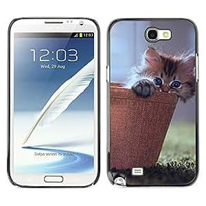 SAMSUNG Galaxy Note 2 II / N7100 , Radio-Star - Cáscara Funda Case Caso De Plástico (Cute Kitty Cat Basket)