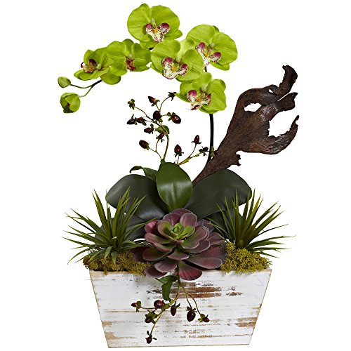 Nearly Natural Phalaenopsis Stem (Nearly Natural 1458-GR Orchid & Succulent Garden with White Wash Planter)